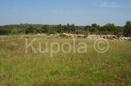Rovinjsko Selo, građevinski teren na dobroj poziciji, 2800m2, Rovinj, Tierra