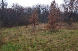 VIŠKOVO Građevinsko zemljište 3247m2, Viškovo, Land
