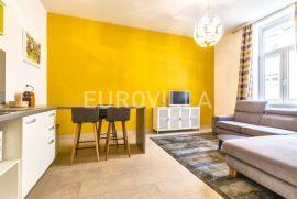 Zagreb, Centar, dvosoban stan 45 m2 za najam, Zagreb, Wohnung