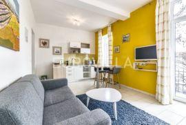 Zagreb, Centar, dvosoban stan 45 m2 s balkonom za najam, Zagreb, Appartment