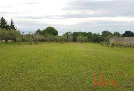 Istra - Marčana - Peruški građevinsko zemljište 10.000m2 / panoramski pogled, Land