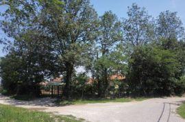 Kosmaj,Koracica,vikendica sa zasadom lesnika, Mladenovac, Kuća