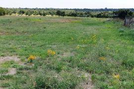 Poljoprivredno zemljište Majmajola, poljoprivredno zemljište, Vodnjan, Γη