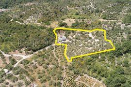 Prodaja, kuća, Orašac, Samostojeća, 78m2, Dubrovnik - Okolica, Maison
