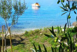 Zemljište uz more 133.500 m2 za poljoprivredna gospodarstva s villama, Dubrovnik, Kuća