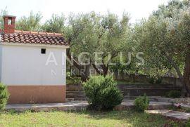 Brač, Splitska-kamena kuća u masliniku, Supetar, Famiglia
