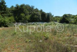 Rovinj, poljoprivredno zemljište sa dozvolom za gospodarski objekat, Rovinj, Land