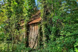 Ruševina i pomoćna zgrada Gorski kotar, Vrbovsko, Casa