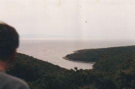 Parcela (šuma) u Istri, Pavićini, 320 m2, Marčana, Arazi