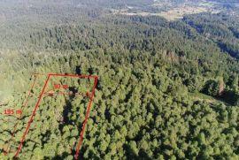 Poljoprivredno zemljište, Ravna Gora, 5835 m2, Ravna Gora, Terrain