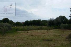 Građevinsko zemljište, Pomer, 1000 m2, 400 metara od mora!, Medulin, Zemljište