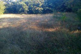 Prodajem hitno zemljište u Dabovićima ispod manastira Ostrog, veoma povoljno, Danilovgrad, Tierra