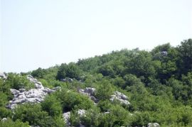 Obzovica, Cetinje, Land