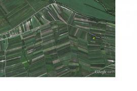 Ovča, 15 ari, 1.8 km od asfalta 5000 eura, Beograd, Γη