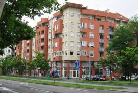 Stan Novi Sad - detelinara, Novi Sad - grad, Flat