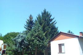 Kuća: Indjija, Cortanovci, 66 m2, 23000 EUR, Inđija, بيت