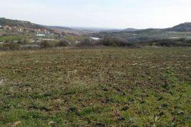 Građevinsko zemljište: Beograd, 1000 m2,21000EUR, Beograd, Zemljište